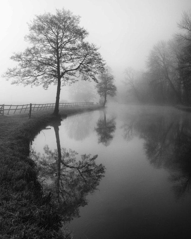 Mist on the Test