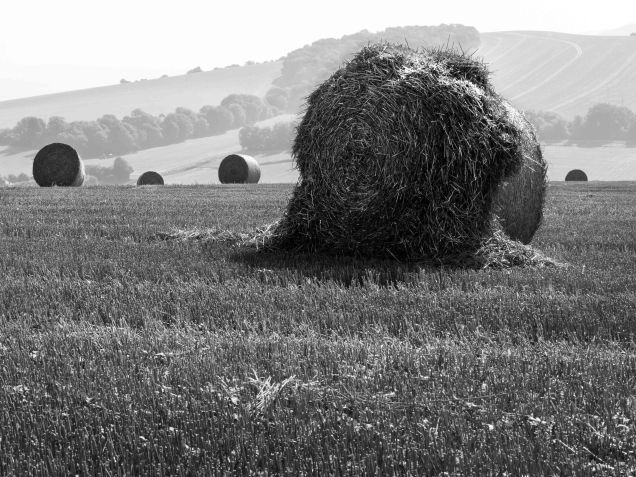 The straw bale