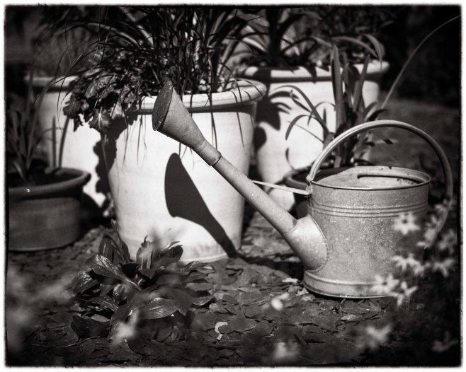 Watering can-3