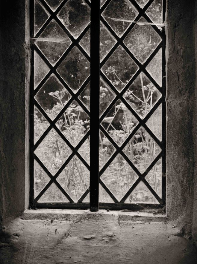 Cobwebs and cow parsley through the leaded light window of Up Marden Church