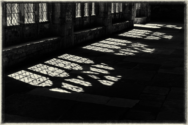 Shadows of Light