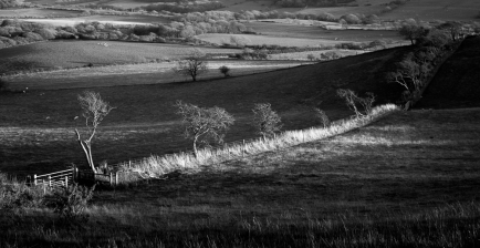 Evening Light at Purbeck