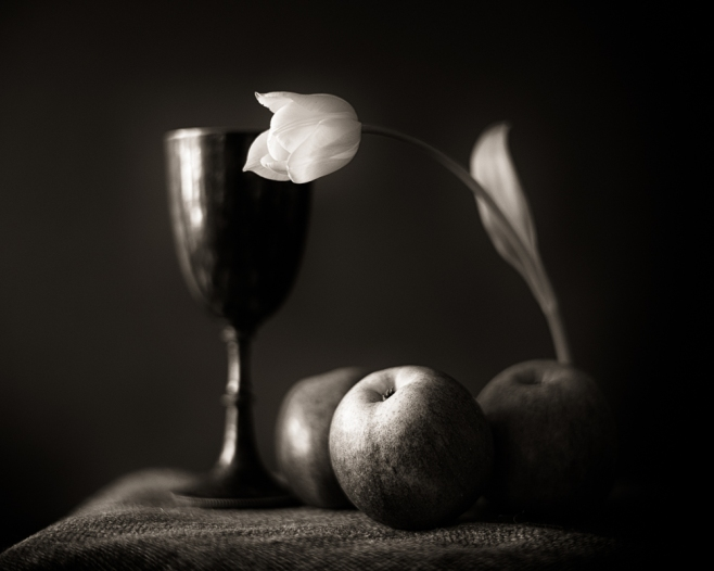 A tulip and three apples