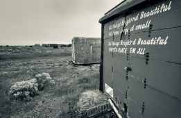 Dungeness-10