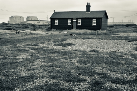 Dungeness-14