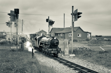 Dungeness-15
