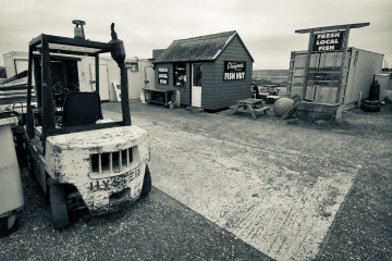 Dungeness-8