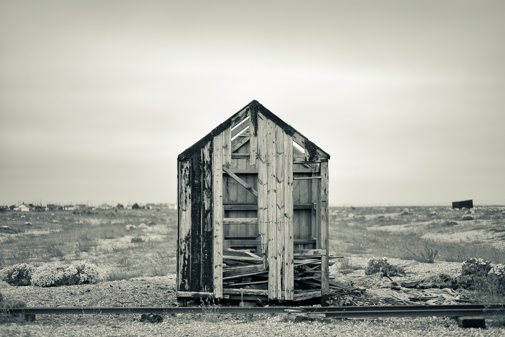 Dungeness-9