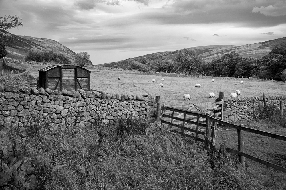 Harthope Valley in The Cheviots – A nod to Fay Godwin | alan frost